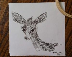 Dik Dik Sketch
