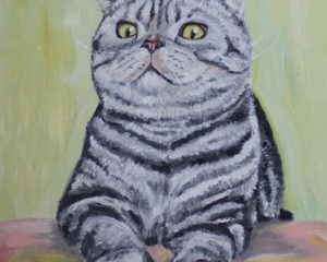 Emonem Cat Portrait